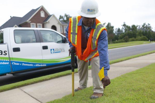 YCNGA Surveyor Working